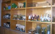 Állategészségügyi-állattenyésztési szakterem